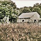 Hank and Marty's Barn in HDR by Jennifer P. Zduniak