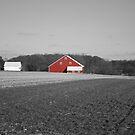 Red Barn by Jennifer P. Zduniak