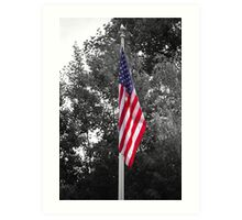 Color Flag in a Black and white world Art Print
