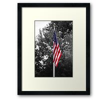 Color Flag in a Black and white world Framed Print