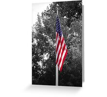 Color Flag in a Black and white world Greeting Card