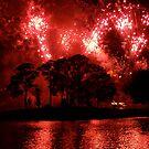 Fireworks at Disney by Jennifer P. Zduniak