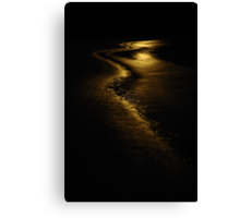 moon light. anderson inlet, victoria Canvas Print
