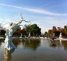 White tree in fountain - Jardin des Tuileries, Paris by mightymite