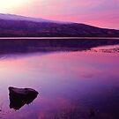 Lake Dunstan by Paul Mercer