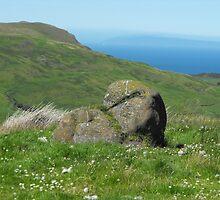 Sallagh Braes, Cairncastle, County Antrim by aldfreckian