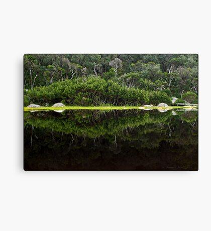 Tidal Mirror Canvas Print