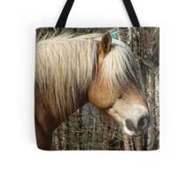 Palomino Horse Lover Equine  Tote Bag