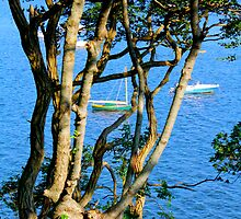 Boats On The Bay By Jonathan Green by Jonathan  Green