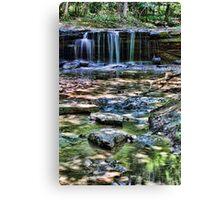 Platt Park Falls Canvas Print