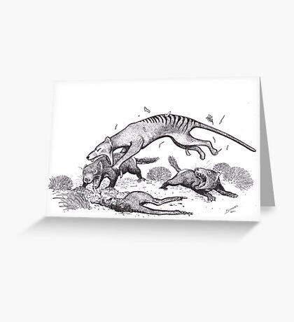 Thylacine attacking devils Greeting Card