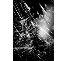 allthings crawling Photographic Print