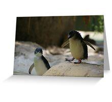 The littlest penguin Greeting Card