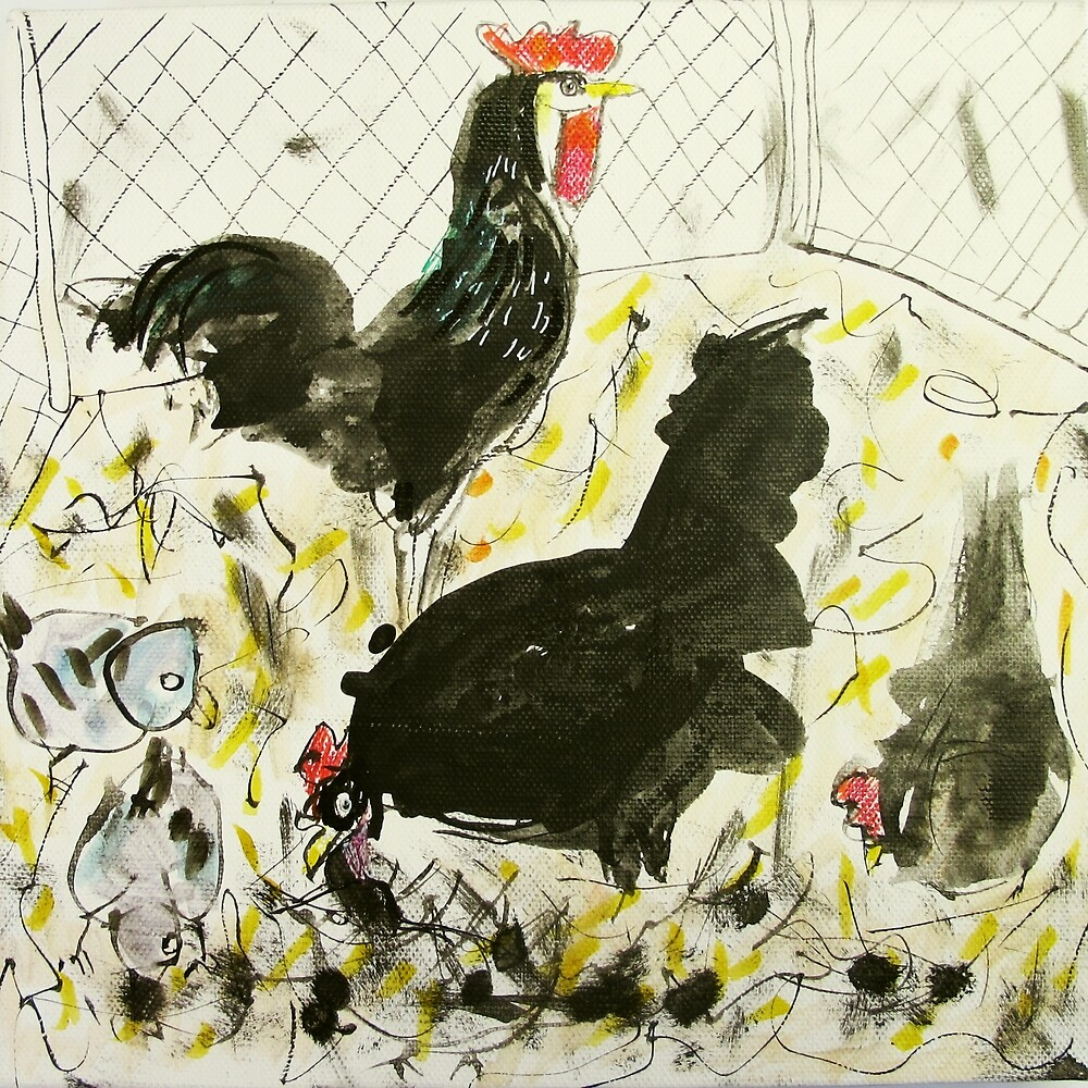 chooks and pigeons by donna malone