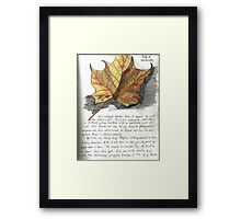 Nature Sketching Day 3- Yellow Sycamore Leaf Framed Print