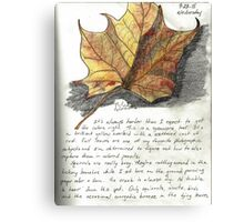 Nature Sketching Day 3- Yellow Sycamore Leaf Canvas Print