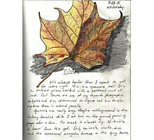 Nature Sketching Day 3- Yellow Sycamore Leaf Photographic Print