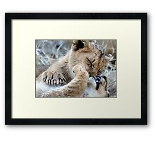Mom, He Is Biting My Nose Again! Framed Print