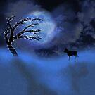 December Moon by Megan Noble