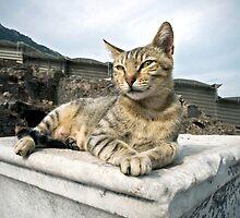 Queen of Ephesus by Glennis  Siverson