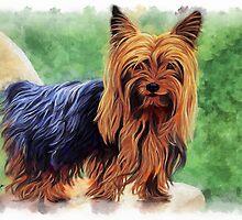Yorkshire Terrier by ellenspaintings