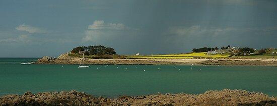 Baie de Morlaix by jean-jean