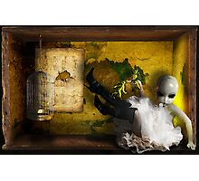 Boxed World Collection - Image 20 - Curious Incarceration Photographic Print
