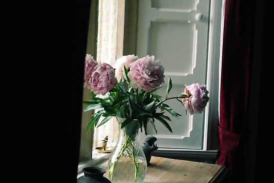 Flowers in the Window by babibell