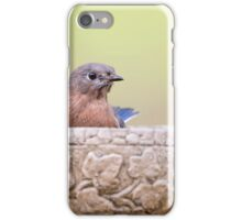 Bluebird Greeting iPhone Case/Skin