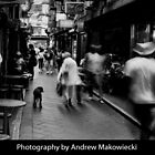 Photography by Andrew Makowiecki by Shot in the Heart of Melbourne, 2012