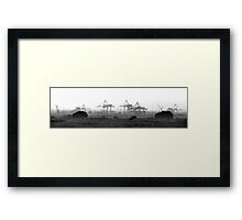 Cranes on Dollymount Strand in Dublin Framed Print