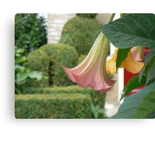 home&garden Canvas Print