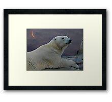 Bedtime Bear Framed Print