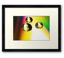 Day Two Framed Print