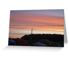 Festival Sunset Greeting Card