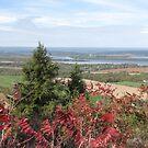 Mt Rigaud in Fall by caybeach
