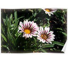 Little Flowers With Active Honeybee Poster