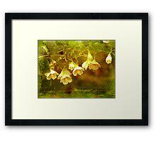 White Whatnots Framed Print
