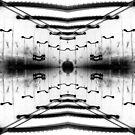 Spanish walkway distort by H J Field