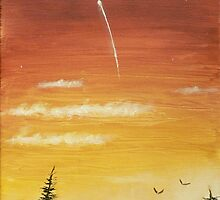 sunset and the shooting star  I by Dan Wagner