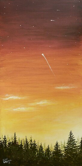 shooting star and the sunset 2 by Dan Wagner