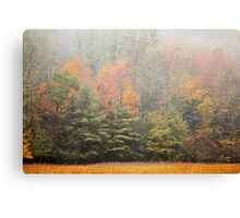 Cataloochee Valley Colors Canvas Print