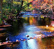Caledonia in Autumn by AngieDavies