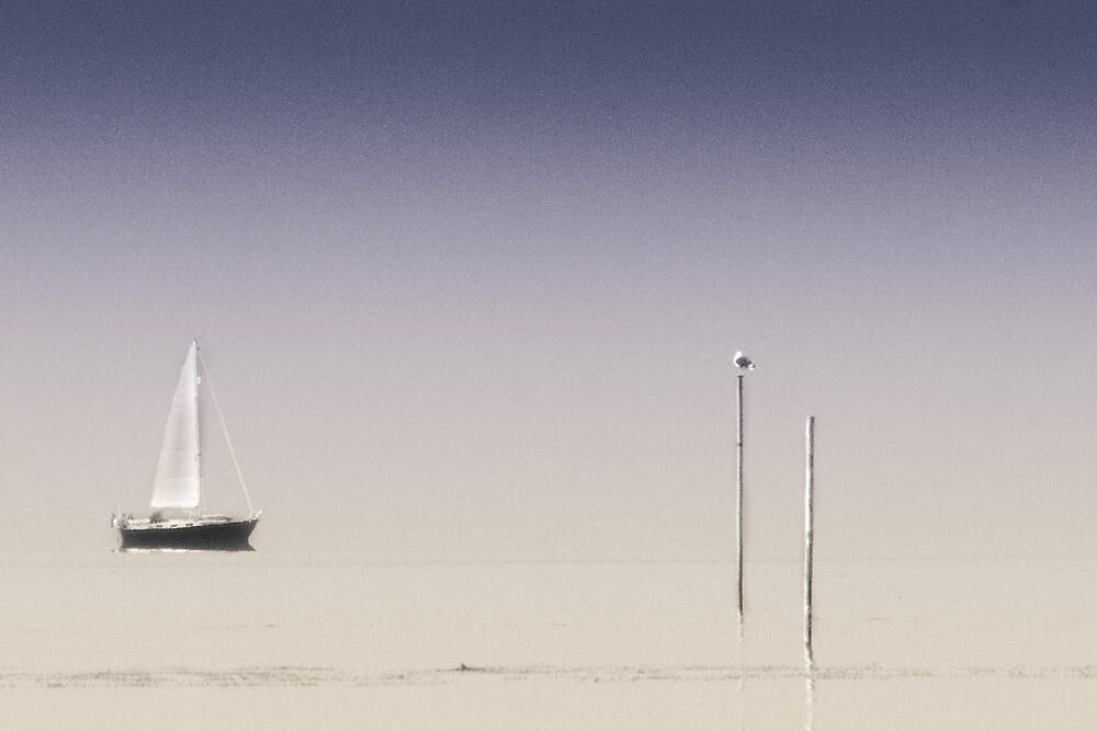 Distant Horizons by derekbeattie