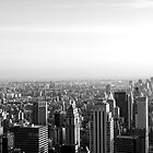 What a view, NYC by Jip van Kuijk