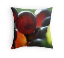 Bull Paddock Wines, Rutherglen - Sangio Glow Throw Pillow