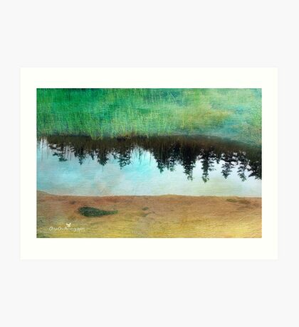 Reflection on canvas Art Print