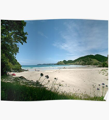 North Whananaki beach - New Zealand. Poster