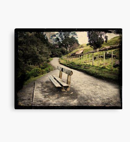 Base track, Mt Mauao. Tauranga, New Zealand. Canvas Print