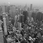 New York NY by Rosestone